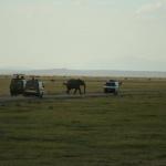 kenia-2009-01 1416
