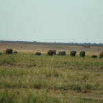 kenia-2009-01 1427
