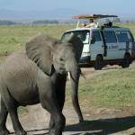 kenia-2009-02 191