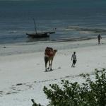 kenia-2009 097